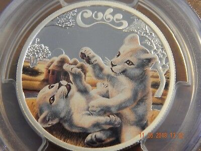 2016-P 1/2 oz 5oC Tuvalu The Cubs - White Lion Cubs PCGS PR70 DCAM