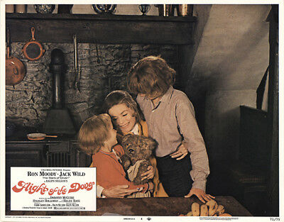Flight of the Doves 1971 11x14 Orig Lobby Card FFF-41590 Fine Dorothy McGuire
