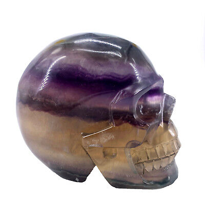 "Hand-Carved 4.33"" Natural Quartz Fluorite Crystal Skull, Realistic,Healing WE487"