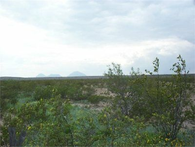5+ TEXAS ACRES w/ Roads & Beautiful Views
