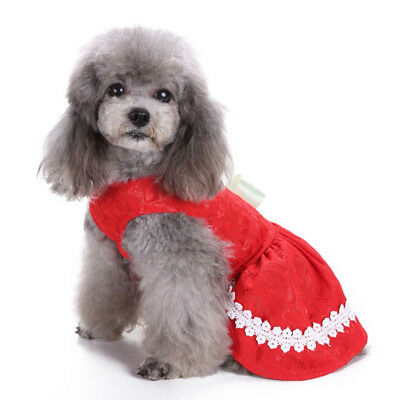 FJ- EG_ Pet Clothes Puppy Cat Dog Clothes Sweet Lace Ribbon Bowknot Decor Dress