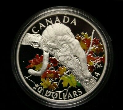 2014 Canada $20 Fine Silver: Cougar : Perched on a Maple Tree