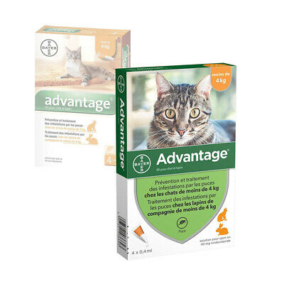 ADVANTAGE 40 x 4 pipettes  Ticks and flea treatment Cat - 4 kg antiparasitaire