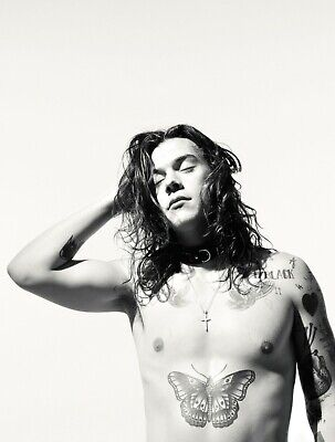 HARRY STYLES POSTER PRINT hs5 - VARIOUS SIZES - BIG or SMALL