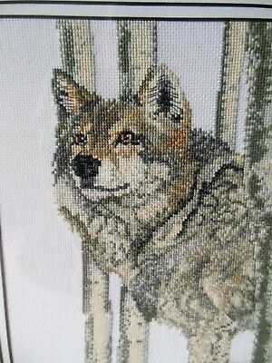 Completed Cross Stitch - Wolf - Framed