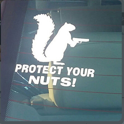 Squirrel Protect Your Nuts Letter Car Stickers Decorative Auto Window Decal IT