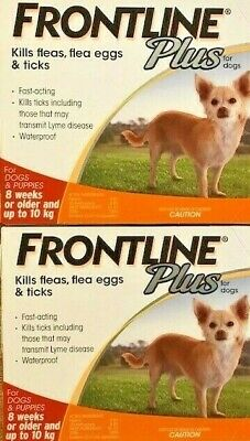 Frontline Plus Flea and Tick Control for Dogs 5-22lbs (0-10kg) 6 Pack 6 Month