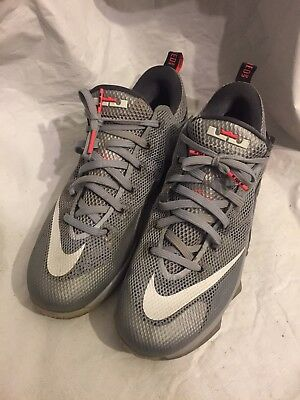 529d8132d9fab5 NIKE LEBRON XII 12 Low The Twelve   Earned Hot Lava Grey 724557-014 ...