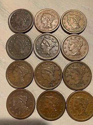 Braided Hair Large Cents - Exceptional Condition  - $27.99 Each