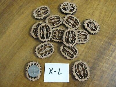50 Quality Extra Large Black Walnut Sices for Basket Making or Other Crafts