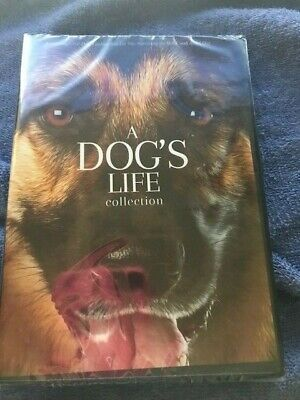 A Dog's Life Collection (DVD,2019) FACTORY SEALED FREE SHIPPING SHIPS NOW!!
