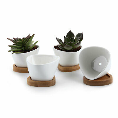 """T4U 3"""" Ceramic White Traiangle Succulent Plant Pots with Bamboo Tray Pack of 4"""