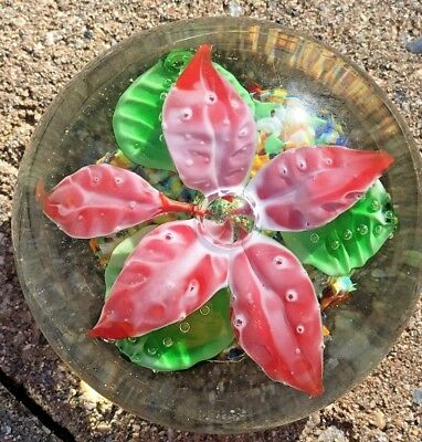Vintage Poinsettia Red Flower Millefiori Base Hand Blown Glass Paperweight