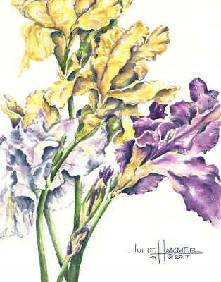 """""""Iris on White"""" 8x10 double-matted Watercolor Art Print by artist, Julie Hammer"""