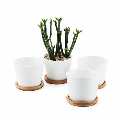 4Pcs 3.5 Inch Ceramic White Round Simple Succulent Plant Pot With Bamboo Tray