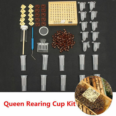 155pcs Queen Rearing System Cultivating Box Bee Catcher Cage Beekeeping Tool Set