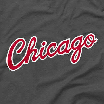 Chicago Bulls Shirt City Script Logo Gray Grey S M L XL 2XL 3XL 4XL 5XL Jordan T