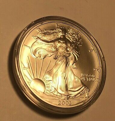 2003 Walking Liberty Mt Rushmore 1 Troy Oz .999 Fine Silver Round Coin