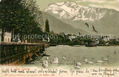 13191893 Lac_Leman_Genfersee Panorama Lac_Leman_Genfersee