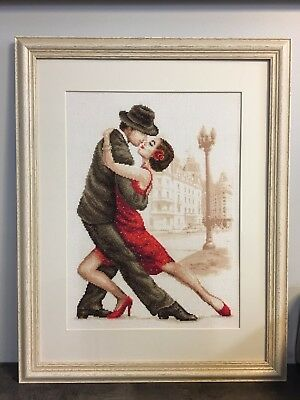 Tango handmade Large Cross Stitch artwork Under Glass Professional Wooden Frame