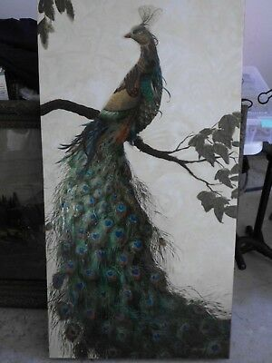 Gorgeous Peacock Painting