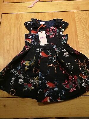 Girls Ted Baker Dress 18-24 Months (new With Tags)
