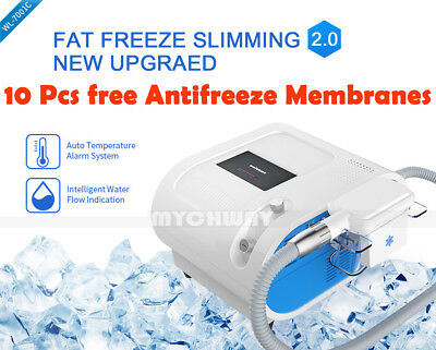 Fat Freezing Lipolysis Weight Loss Cold Slimming Machine Frozen Fat Machine Spa