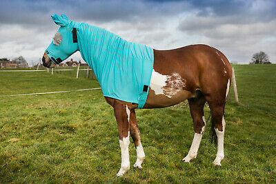 Snuggy Hoods Sweet Itch Hood Horse With