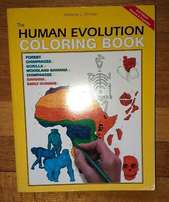 THE HUMAN EVOLUTION Coloring Book 1982 by Adrienne Zihlman - $8.88 ...