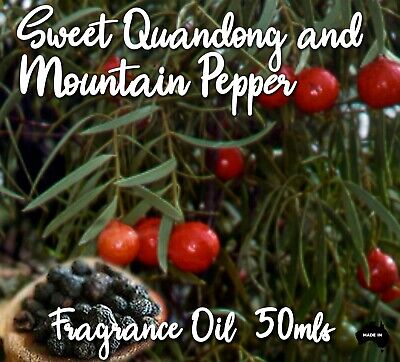 Sweet Quandong & Mountain Pepper Top Quality Fragrance Oil, 50 Mls - Candles