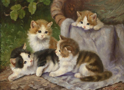 ZWPT618 fine small animals 4 cats playing hand painted art oil painting canvas