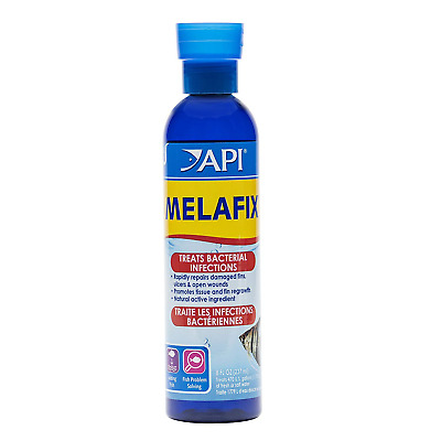 API Fish Treatment Freshwater Bacterial Infection Remedy 237 ml Bottle Value Use