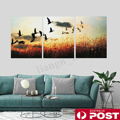 3Pcs/set Unframed Canvas Print Painting Poster Wall Art Picture Home Decor AU