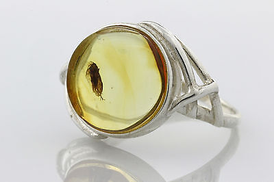 Fossil Insect CADDISFLY Inclusion Genuine BALTIC AMBER Silver Ring 6.5 r51126-13