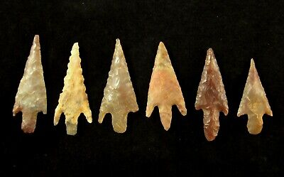 Ancient Neolithic Large - Medium Western Sahara Top Quality Barbed Arrowhead Set