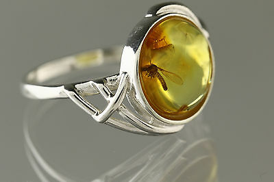 CRANE FLY Fossil Insect Genuine BALTIC AMBER Silver Ring 8.5 r161206-1