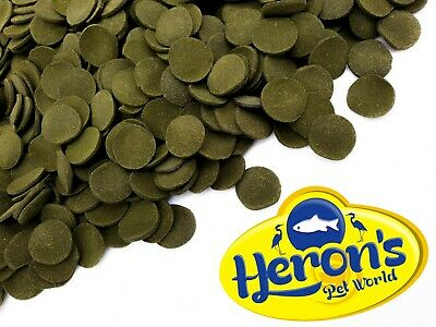 HERONS Pleco Wafers ALGAE SPIRULINA CORY PLEC CATFISH Premium Tropical Fish Food