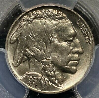 1937-D Buffalo Nickel 5C | PCGS MS67 | Superb Gem CAC Approved | Gold Shield