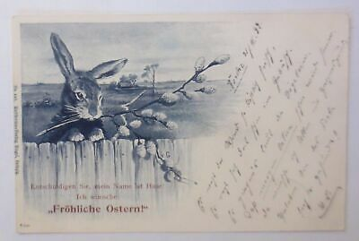 Easter, Rabbit, Excuse You, Mein Name Is Rabbit 1899 (62713)