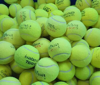 Used Tennis Balls -GOOD CONDITION-Ball Games/Dogs- 7,8,or 9 - Washed & Sanitised