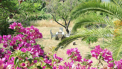 two spainish holiday apartments holiday accomodation costa blanca spain