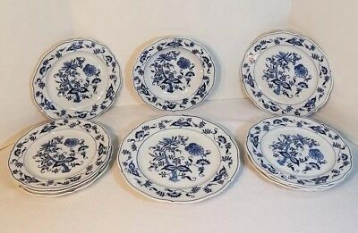 10 pieces of Blue Banner Ribbon Blue Danube: 8 Salad Plates, 1 Dinner, & 1 Soup