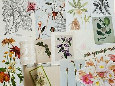 vintage paper floral flowers botanical images pictures for art craft collage