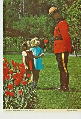 Postcard - Canada - Royal Canadian Mounted Police Mountie