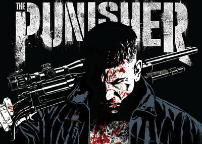 THE PUNISHER SEASON 1 & 2-8 Dvd's 26 Chap. FROM  INTERNET .ENGLISH with SUBT.