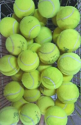 Used Tennis Balls For Dogs / Games - 4,5,or 6 Balls - Machine Washed & Sanitised
