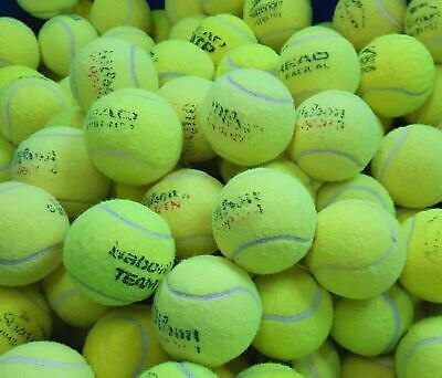 Used Tennis Balls -GOOD CONDITION-Ball Games/Dogs- 4,5,or 6 - Washed & Sanitised
