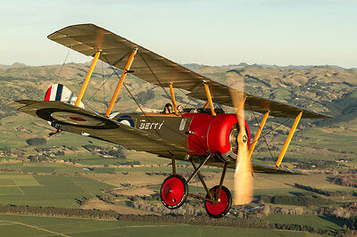 Sopwith Pup Plans