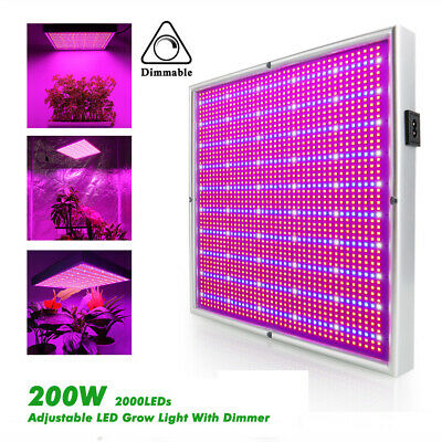 200W Dimmable 2000 LED Grow Light Full Spectrum Hydroponic F Medical Veg Flowers