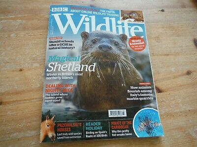 BBC Wildlife Magazine March 2019: Shetland, Przelwalski's, Lionfish